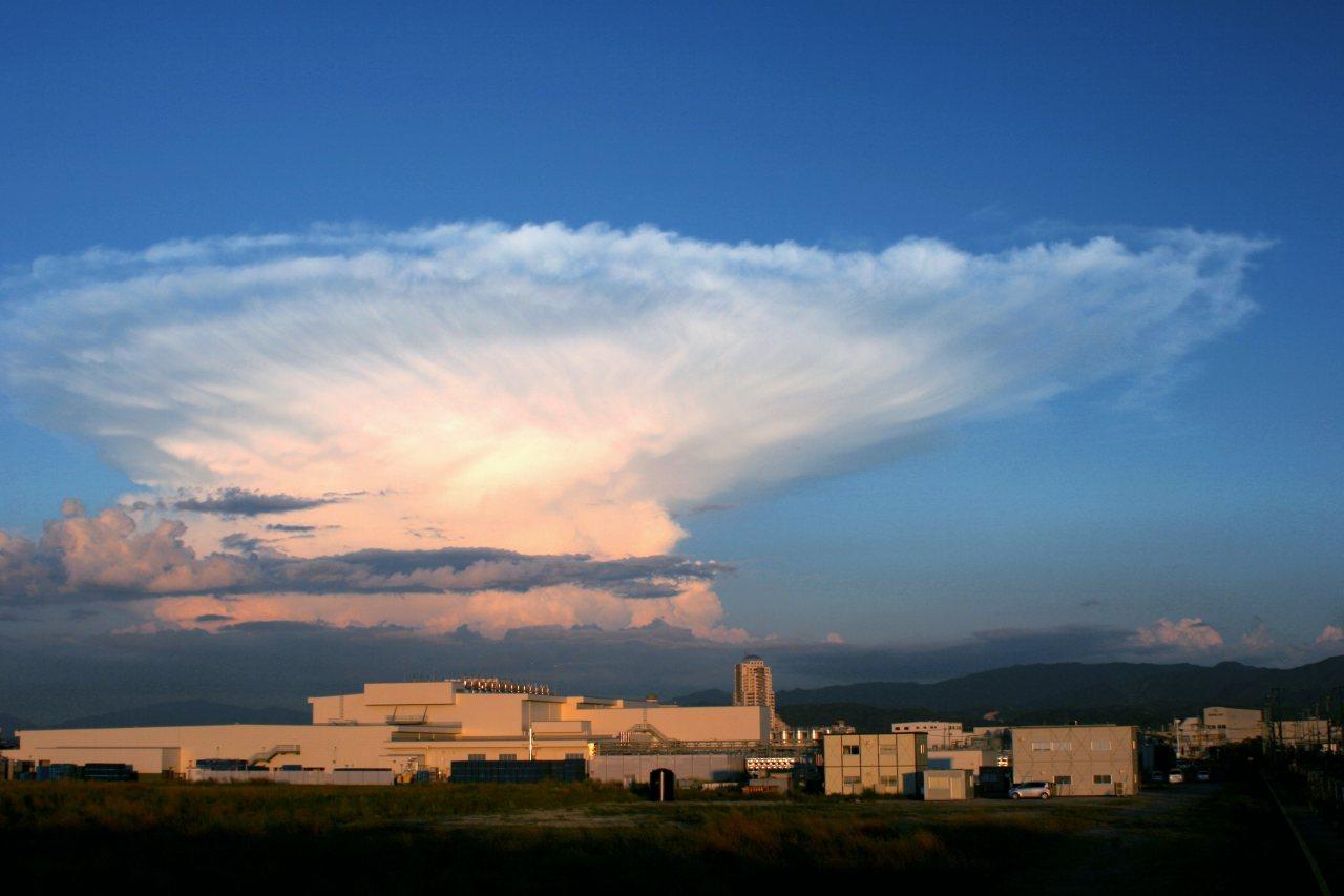 竜巻 を 発生 させる 雲 は